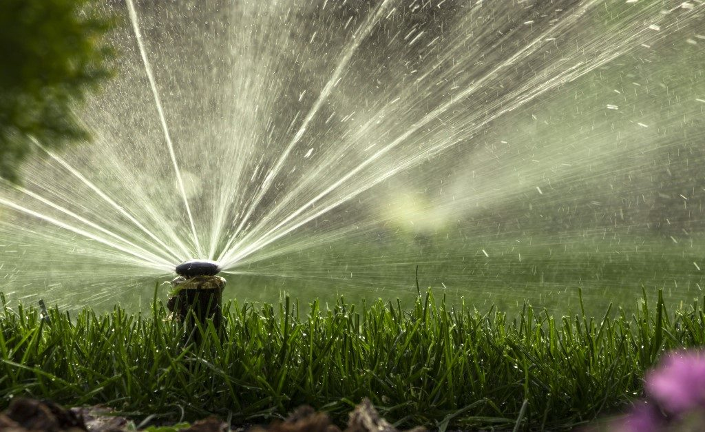 picture of sprinkler spraying across green grass and garden