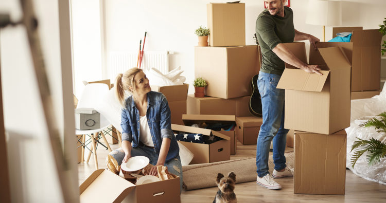 Top packing tips for moving home